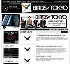 birdsOfTokyoWeb_sml.jpg